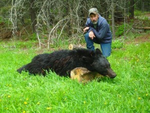 Southfork Outfitters Inc. Spring Bear 2012  Montana