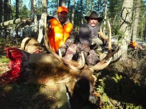 southfork outfitters montana late season elk 2013