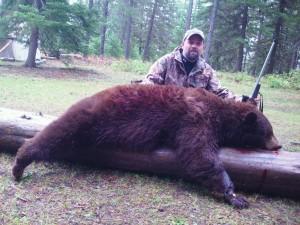 southfork outfitters montana wilderness bear 2013